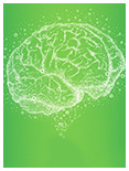 你知道记忆和记忆力的区别吗?――精英特速读记忆训练网
