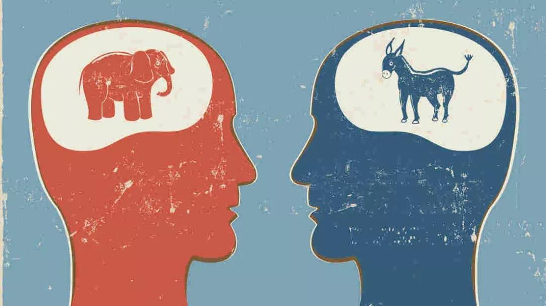 阅读者与文盲的大脑生理结构存在显著差异