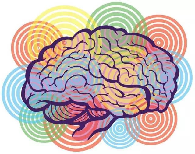 让孩子大脑更聪明的4种养分