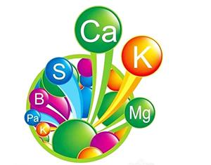 化学元素的快速记忆六法