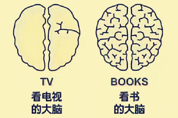 阅读与看电视对电脑的影响完全不一样。