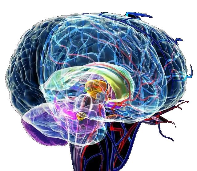 人类最伟大的发现之一,就是对大脑无限潜能的认识