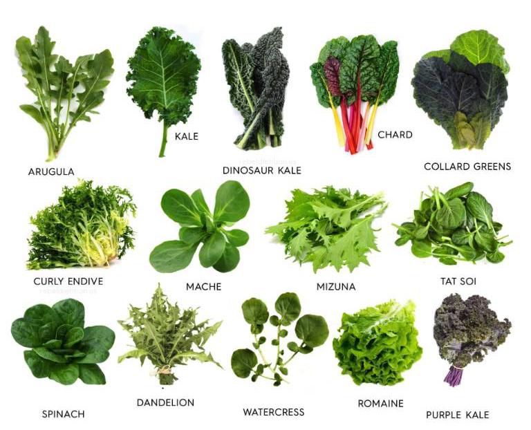 吃青菜能保持记忆和思维能力,让大脑更年轻