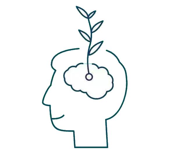 思维能力与生活学习息息相关